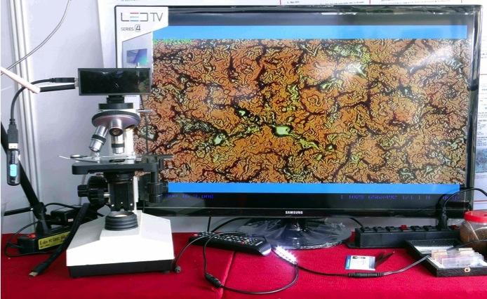 Thiết bị kính hiển vi